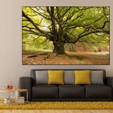 Tablou Arbore Magnific