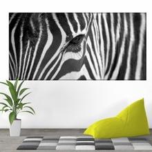 Tablou Ochi de Zebra anz29