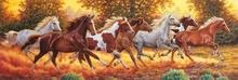 Tablou panoramic cai
