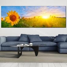 Tablou Panoramic Floarea Soarelui