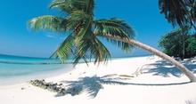 Tablou plaja tropicala 02