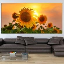 Tablou Canvas Floarea Soarelui asb24