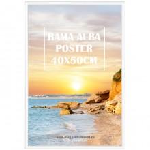 Rama Alba, Poster 40x50cm