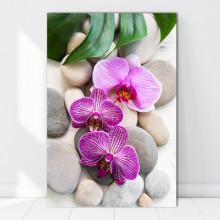 Tablou Canvas Orhidee cu Pietre Spa ORST120