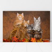 Tablou Canvas Pisicute cu Bicicleta CAT25