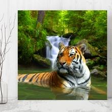 Tablou Tigru in Rau atgr1