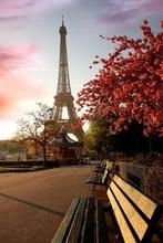 Tablou Turnul Eiffel 08