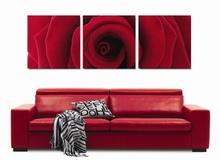 Multicanvas trandafir macro 1a