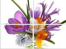 Multicanvas flori de primavara