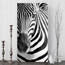 Tablou Canvas Zebra anz15