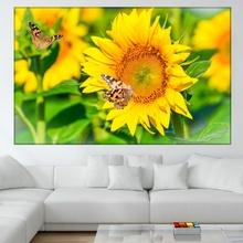 Tablou Floarea Soarelui - Simbol al Verii asb29