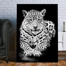Tablou Leopard Alb Negru ATGR61