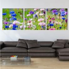 Multicanvas Flori de Camp Colorate FLD 23