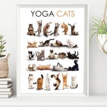 Poster + Rama Yoga Cats AFE30