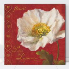Tablou Canvas Floare Alba cu Fundal Rosu FAB103