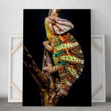 Tablou Canvas Iguana ICP2