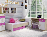 Birou cu dulap si polita, pentru tineret, 100x50x76cm, Model 6052.2, roz