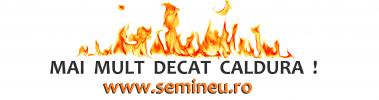 seminee clasice
