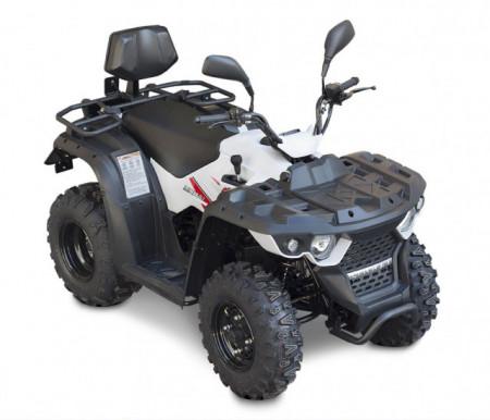 ATV Linhai M150-2x4BL model omologat T3b