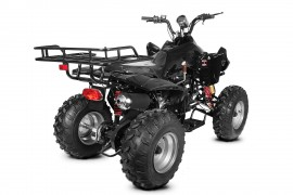 Poze BEMI BIG Mega ReneGade 200CVT Full Automatic R10