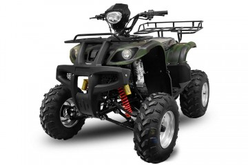 Poze BIG Mega Grizzly FARMER 250cc cu trepte si bord electronic
