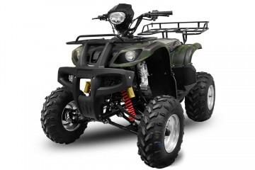 BIG Mega Grizzly FARMER 250cc cu trepte