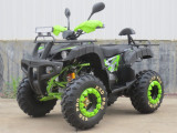 BEMI BIG Mega Grizzly HUMMER 250CVT Full Automatic R10