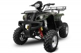 BIG Mega Grizzly FARMER 250cc cu trepte si bord electronic