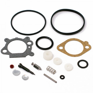 Kit reparatie carburator Briggs Stratton 498260