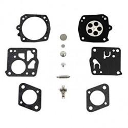 Kit reparatie carburator tip HS (RK-23HS)