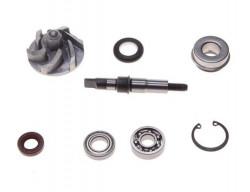 Kit reparatie pompa apa ATV 250cc