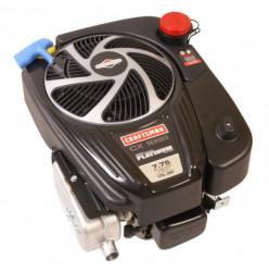 Motor Briggs & Stratton 7 CP (775 Series)