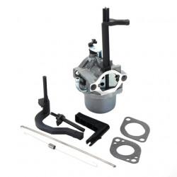 Carburator Briggs&Stratton 591378, 699966, 699958