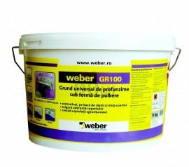 Weber GR100