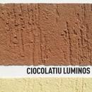 Danke! Textur Silikon Ciocolatiu Luminos