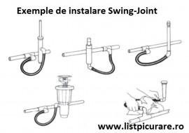 Legatura flexibila(Swing joint) 1/2'' - 1/2'' Fe