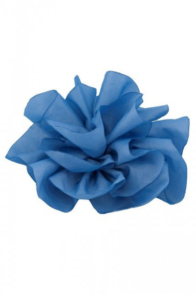 Poze Brosa Explosion bleu