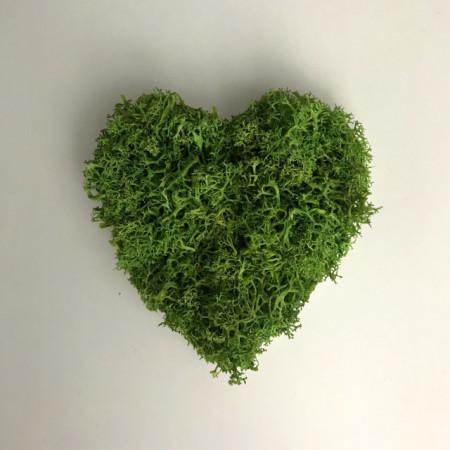 Poze Tablou licheni stabilizati - inima