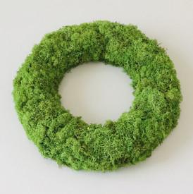 Tablou licheni stabilizati - cerc 35 cm