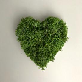 Tablou licheni stabilizati - inima