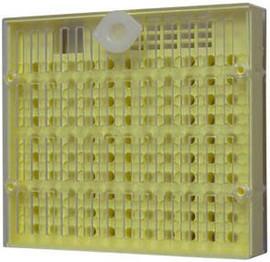 Poze Cutia Nicote produsa de Nicote,pt cresterea matcilor
