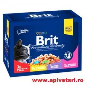 Plicuri Pt Pisici Hrana Premium Brit Cutie de 12 plicuri a cate 100 gr Fiecare