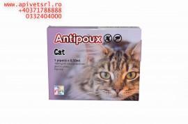 Antipoux cat- pipeta pt pisici BAX sigilat de la producator 20 pipete, livrare priunde in Romania sau UE