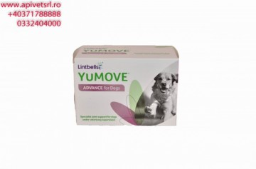 Youmove Advance - cutie de 120 pastile
