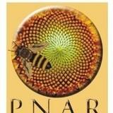 Matci achizitionate prin PNA (Programul National Apicol)