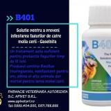 B401 Certan, inbuteliere de 120 ml set de 6 flacoane(suficiente pt a pastra 380 rame Dadant timp de 1 an)