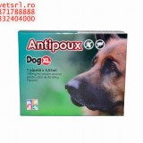 Antipoux dog XL- pt catei de 30-40 kg