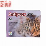 Antipoux cat- pipeta pt pisici set de 4 pipete