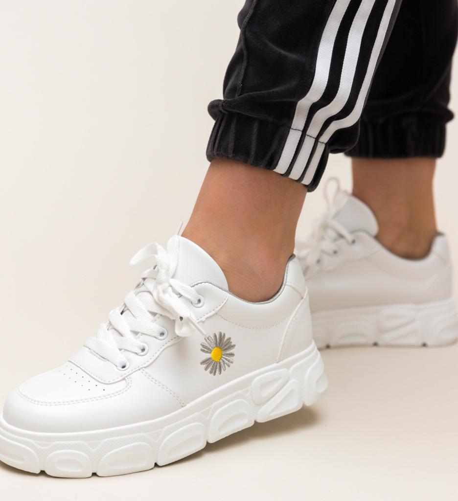 Pantofi Sport Azgaro Albi