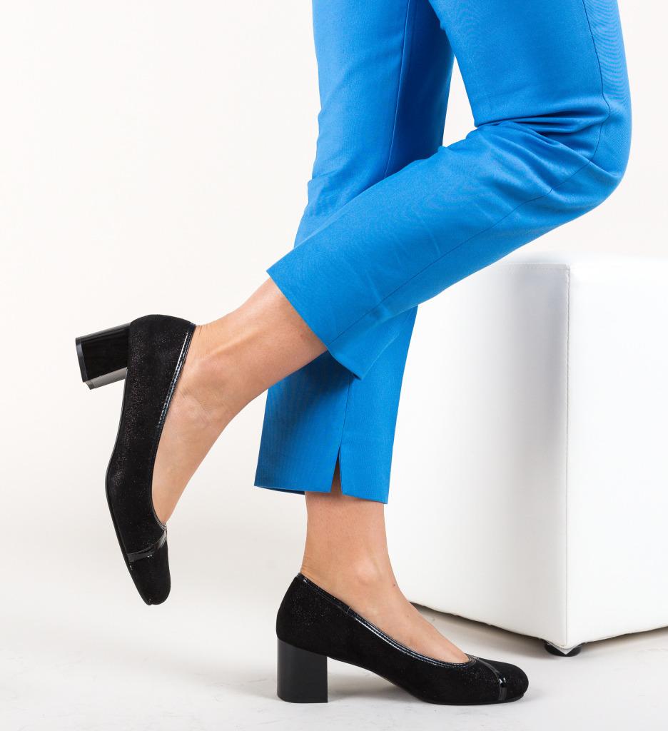 Pantofi Burt Negri